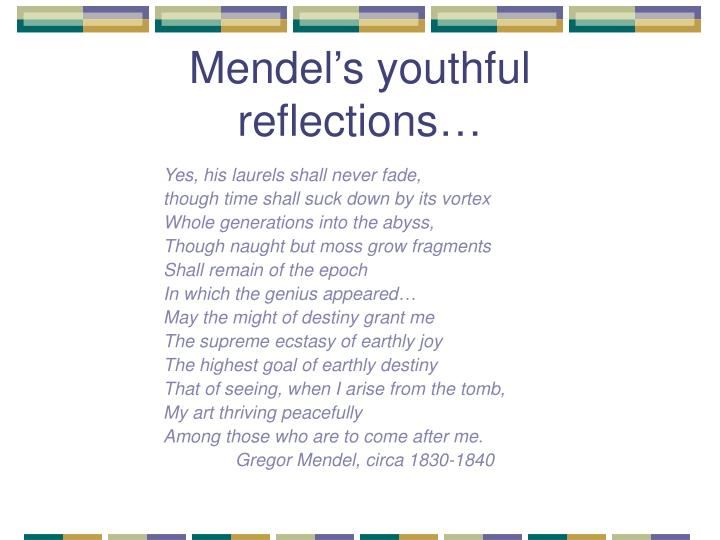 Mendel's youthful reflections…