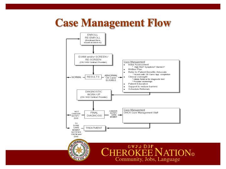 Case Management Flow