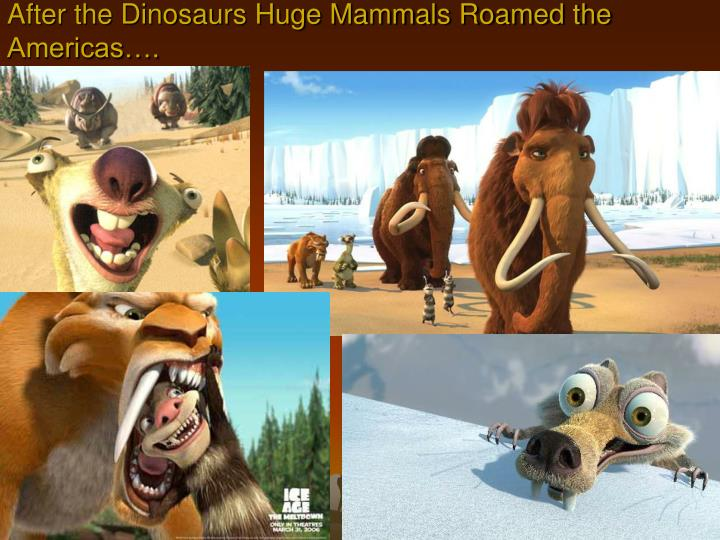 After the dinosaurs huge mammals roamed the americas