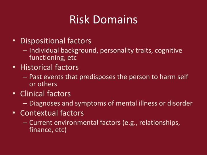Risk Domains