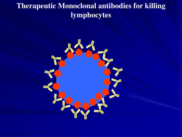 Therapeutic Monoclonal antibodies for killing lymphocytes