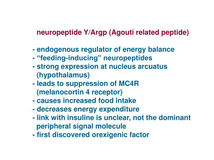 neuropeptide Y/Argp (Agouti related peptide)