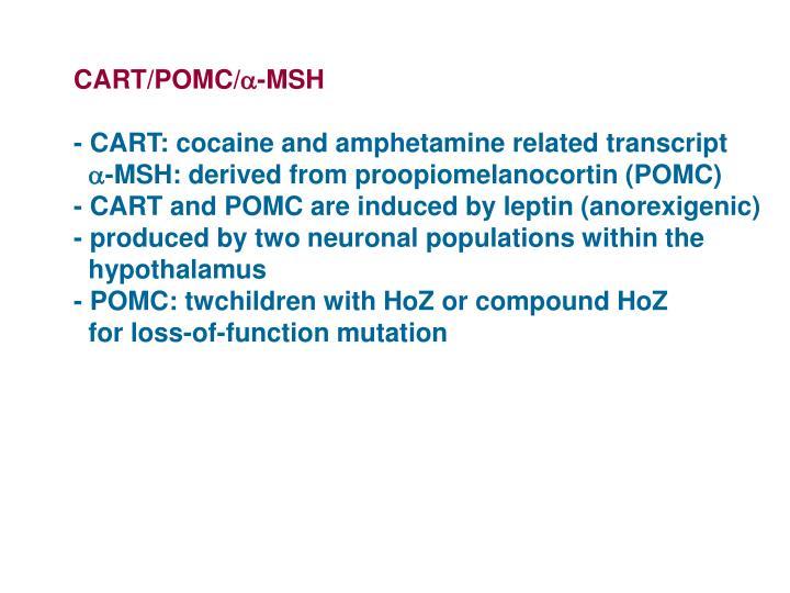 CART/POMC/