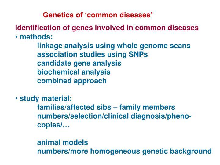 Genetics of 'common diseases'