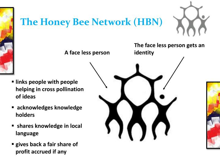 The honey bee network hbn
