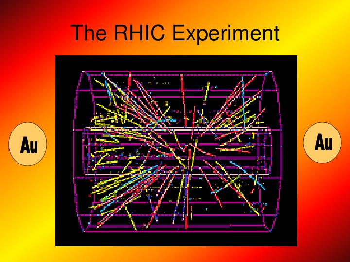 The rhic experiment