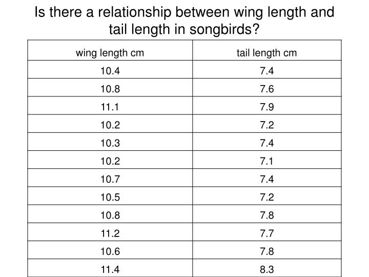 Is there a relationship between wing length and tail length in songbirds?