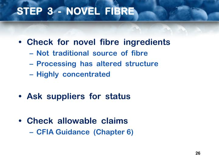 STEP  3  -  NOVEL  FIBRE