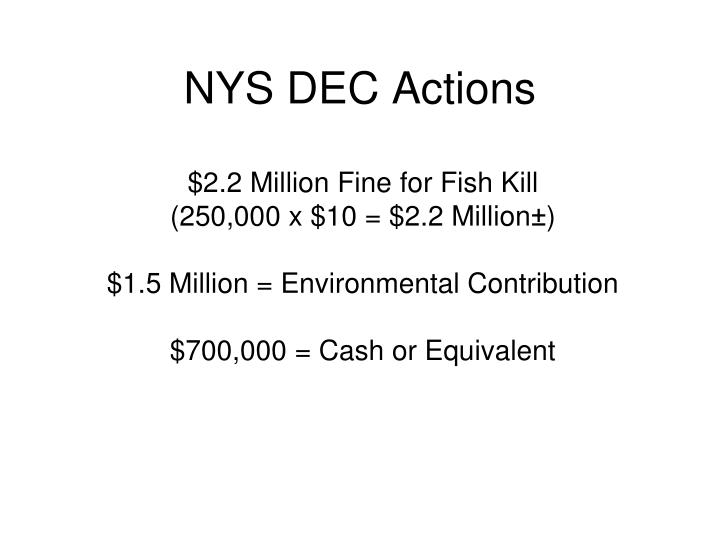 NYS DEC Actions