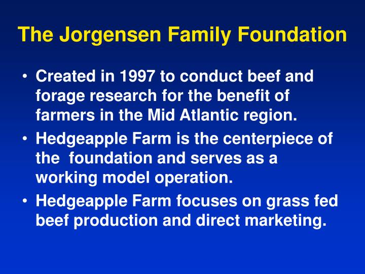 The jorgensen family foundation