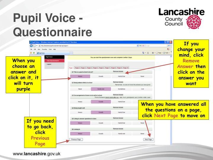 Pupil Voice - Questionnaire