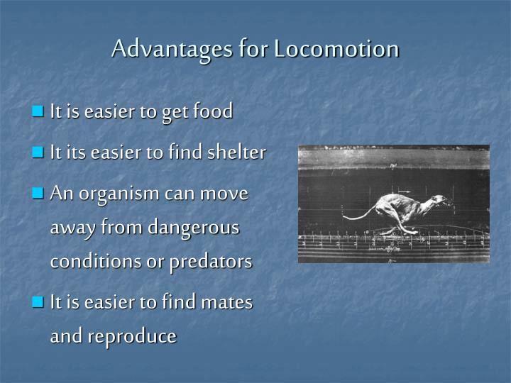 Advantages for Locomotion