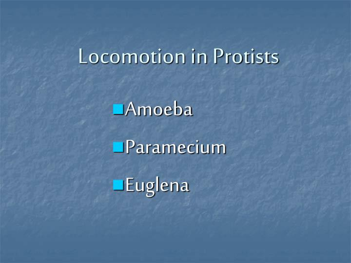 Locomotion in Protists
