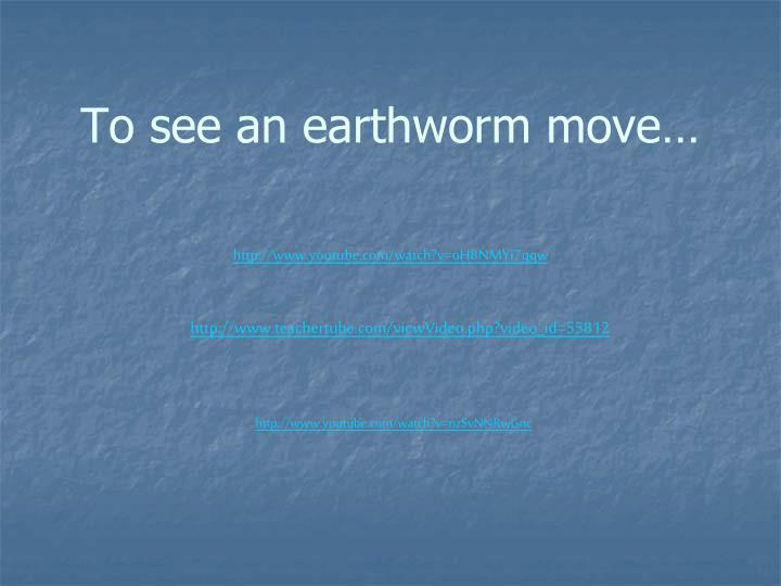 To see an earthworm move…