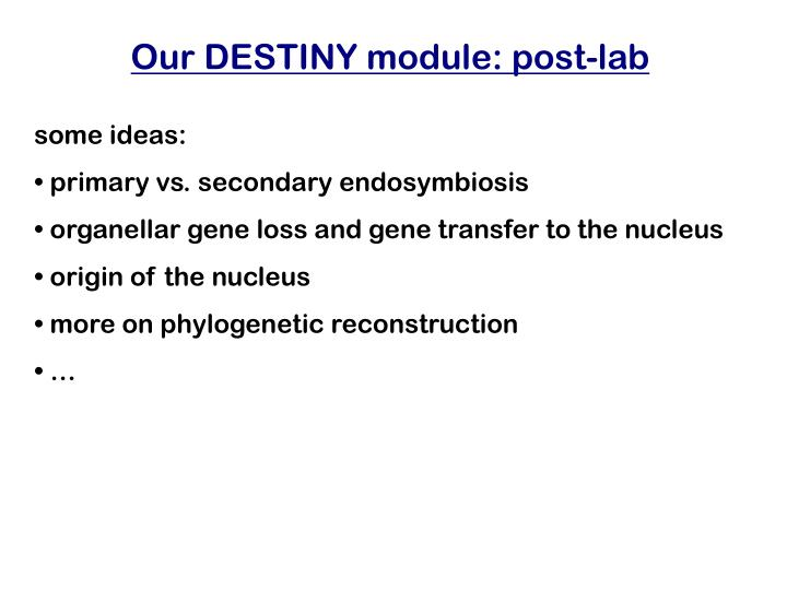 Our DESTINY module: post-lab