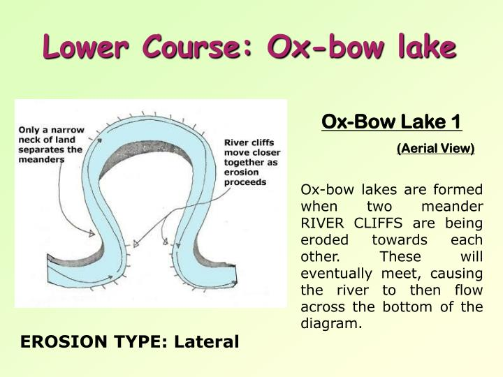Lower Course: Ox-bow lake