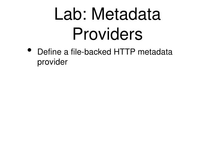 Lab: Metadata Providers