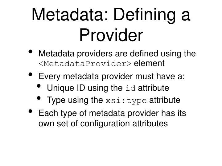 Metadata: Defining a Provider