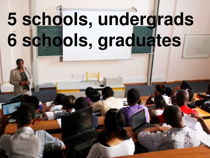 5 schools, undergrads