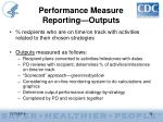 performance measure reporting outputs