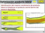 optimizaci n producto lateral7