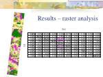 results raster analysis