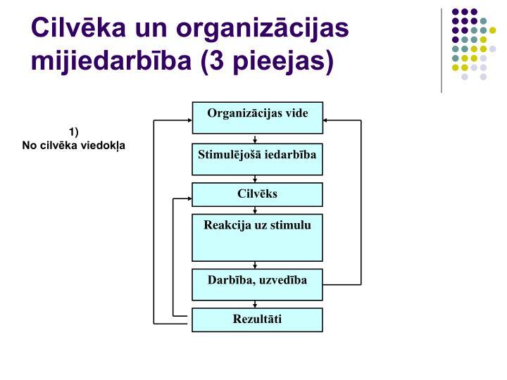 Organizācijas vide