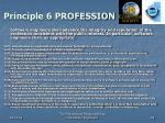 principle 6 profession