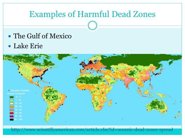 Examples of Harmful Dead Zones