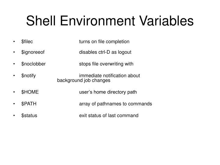 Shell Environment Variables