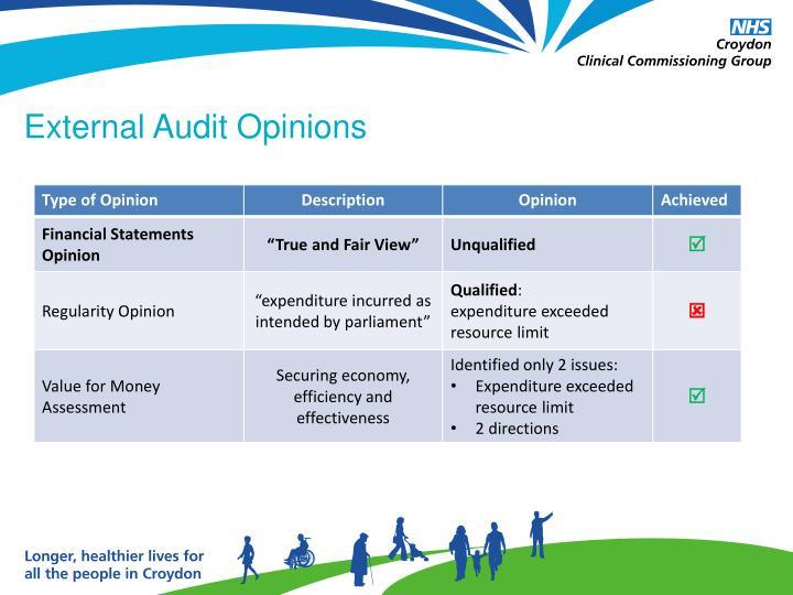 External Audit Opinions