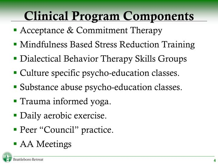 Clinical Program Components