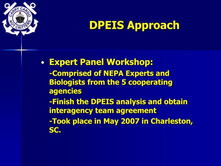 DPEIS Approach