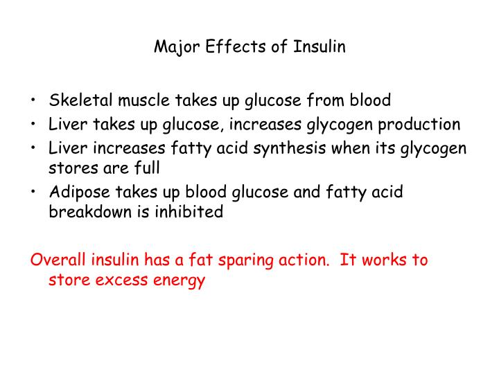 Major Effects of Insulin
