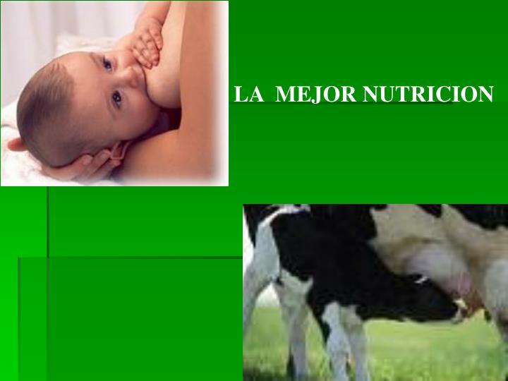 LA  MEJOR NUTRICION