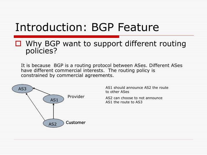 Introduction: BGP Feature