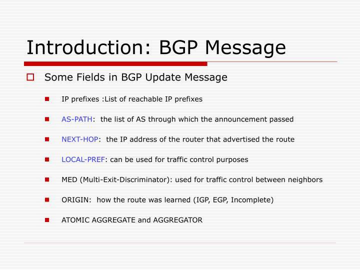 Introduction: BGP Message