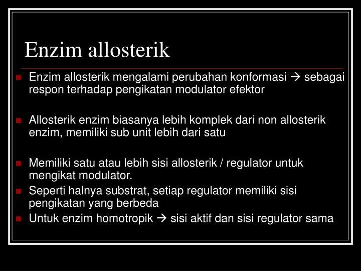 Enzim allosterik