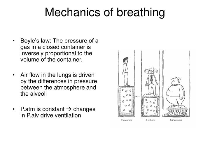 Boyle's law: The pressure of a gas in a closed container is inversely proportional to the volume of the container.