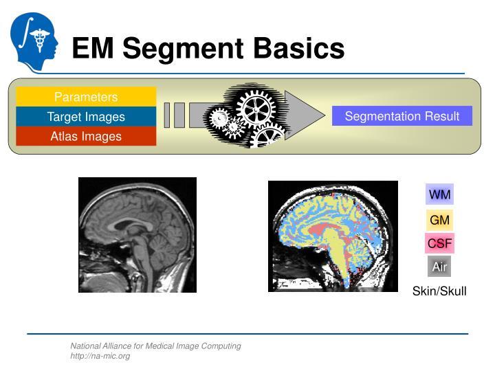EM Segment Basics