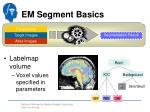 em segment basics6