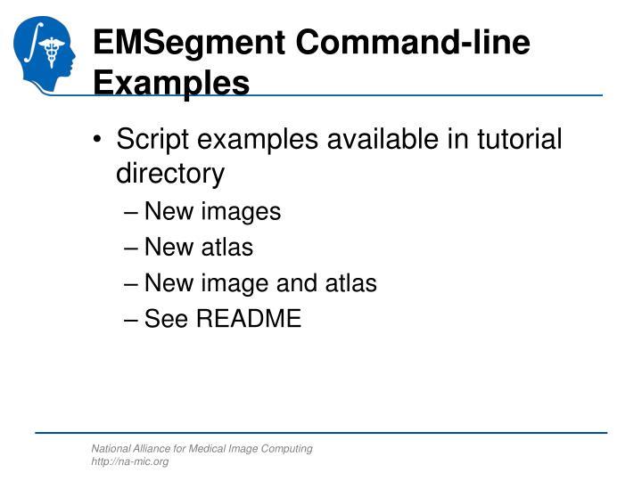 EMSegment Command-line Examples