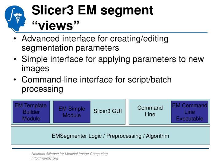 """Slicer3 EM segment """"views"""""""
