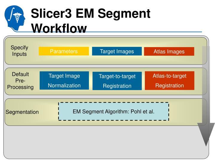 Slicer3 EM Segment Workflow