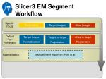 slicer3 em segment workflow2