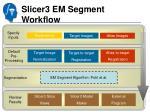 slicer3 em segment workflow3
