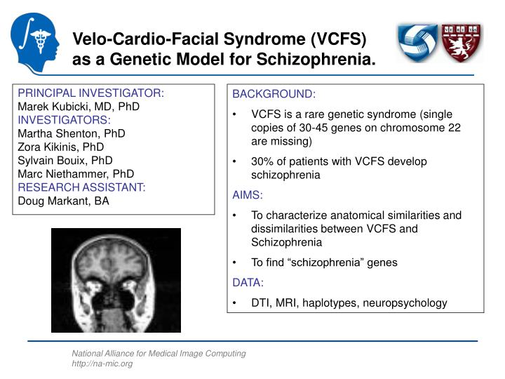 Velo-Cardio-Facial Syndrome (VCFS)