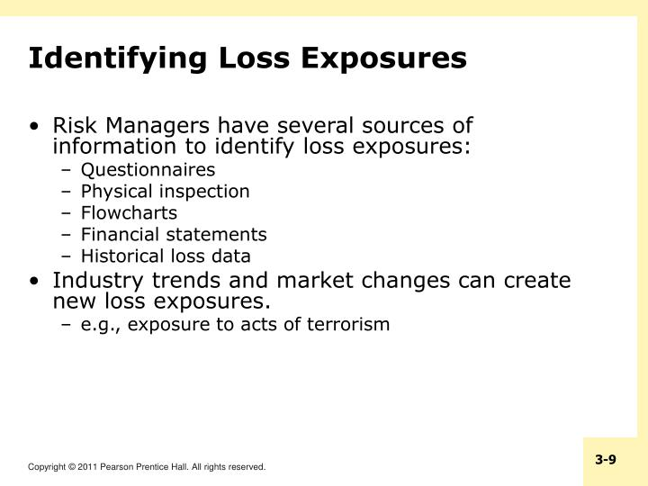Identifying Loss Exposures