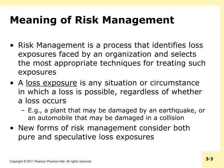 Meaning of Risk Management