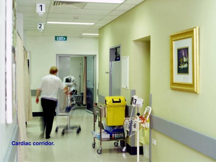 Cardiac corridor.